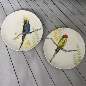 ANTHROPOLOGIE bird parakeet porcelain white plates